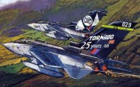 "Самолет RAF TORNADO GR.4 ""25th ANNIVERSARY OF THE GR"" & ""SHINY TWO"""